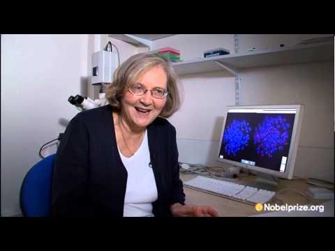 Elizabeth Blackburn, 2009 Nobel Laureate in Physiology or Medication