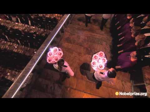 Dessert Parade at the Nobel Banquet 2015