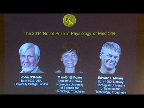 Nobel Prize for Medication gained by scientists who found the brain's 'GPS system'