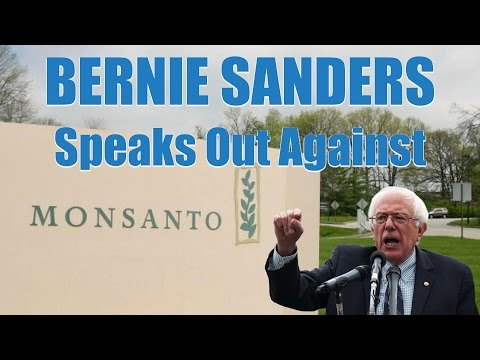 """""""Monsanto"""" by Bernie Sanders – My Conflict With GMO Labeling Regulations"""