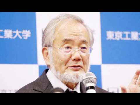 Japanese scientist Ohsumi wins Nobel medication prize 2016 Hd