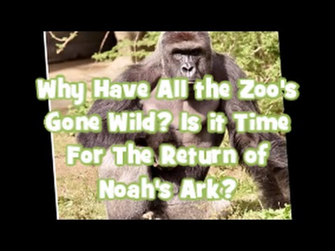 Why Have All The Zoo's Absent Wild? Is it Time For The Return of Noah's Ark?