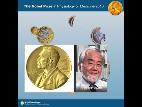 NOBEL PRIZE WINNER 2016 in Medicine or Physiology | Japan's Yoshinori Ohsumi