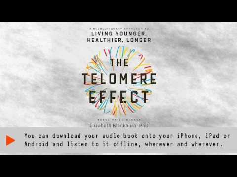 The Telomere Influence: A Innovative Tactic to Dwelling Young, Much healthier, Longer